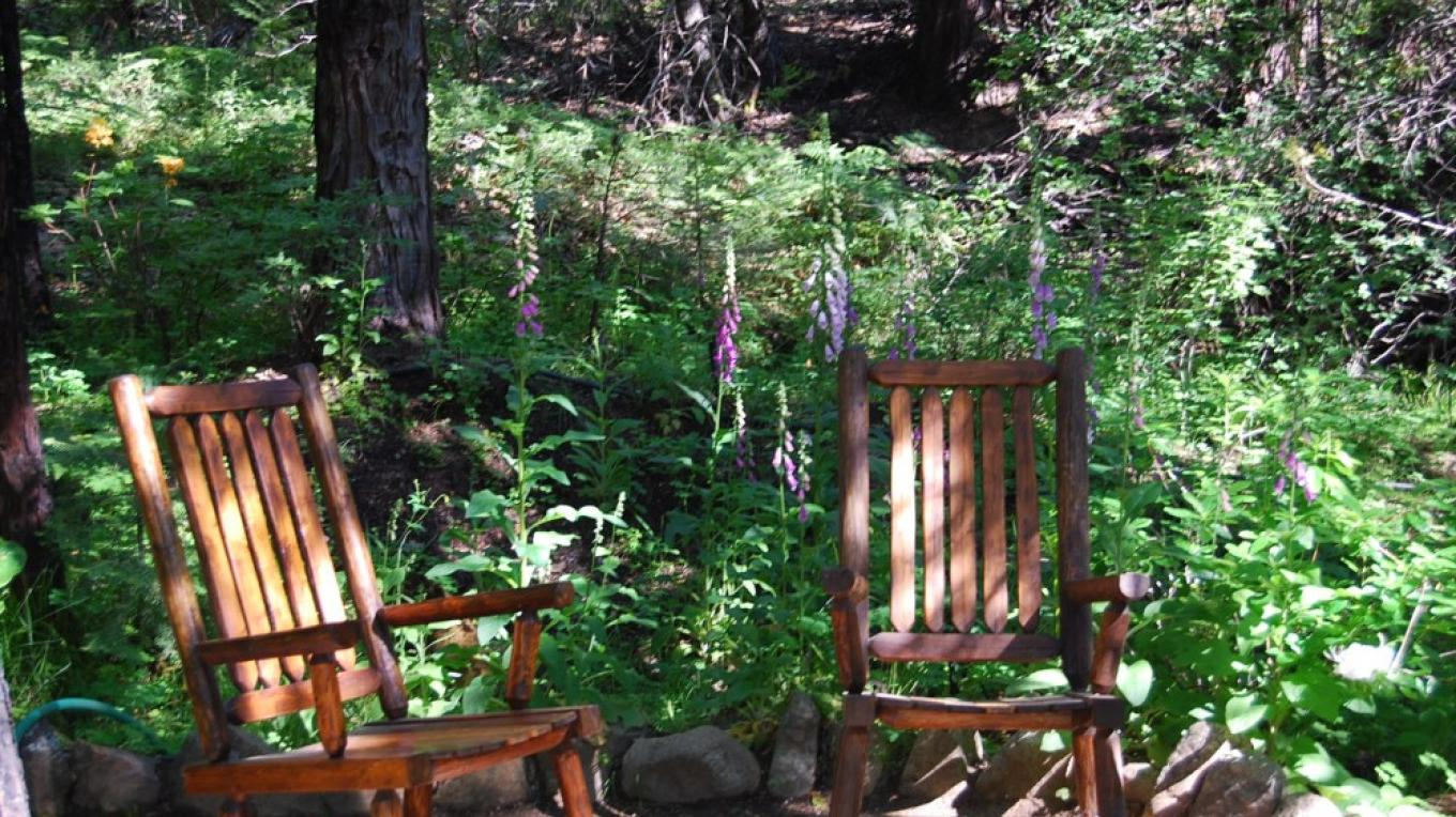 Relax on our nature trail with a good book – Martha VanAman