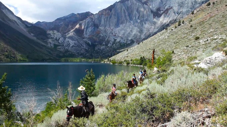 Horseback Riding – Steve Marino