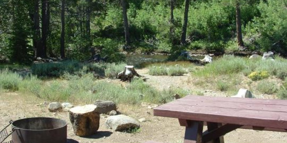 Some of the campsites over look Little Truckee River.