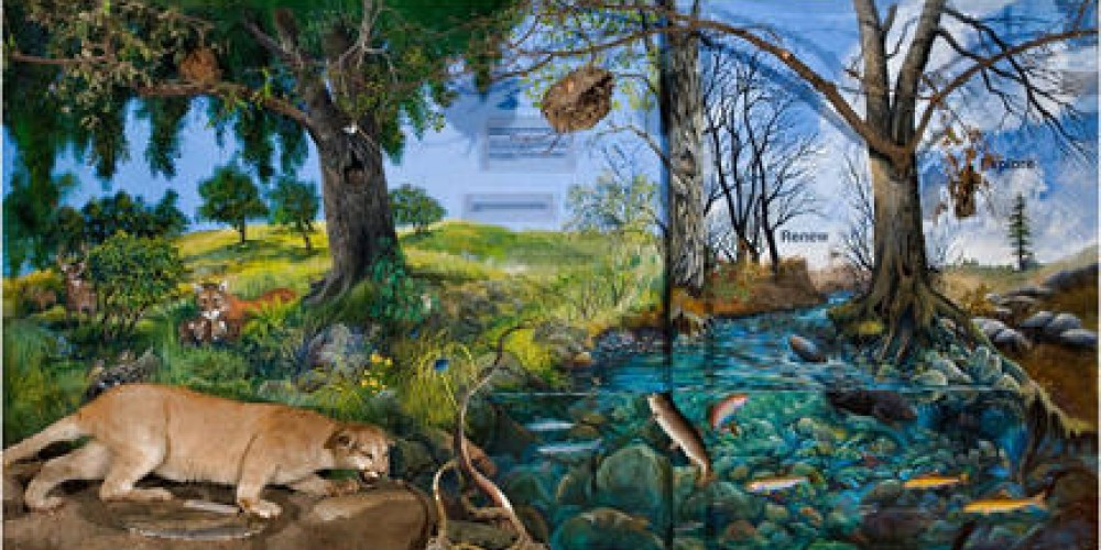 Nature Center - Interior_2 – Michael Maydak