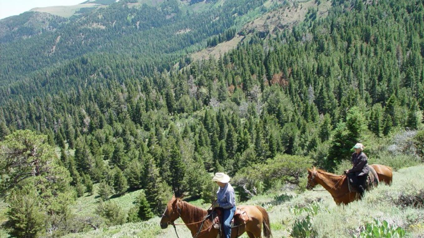 Scenic vistas are found everywhere in the South Warner Wilderness. – Jean Bilodeaux