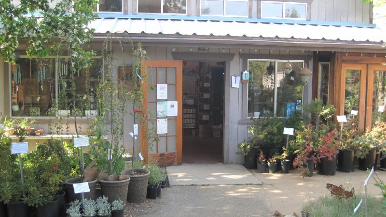 Nursery Gift Shop – Bonnie Bladen