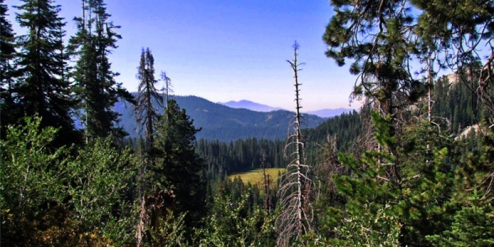The view from the Twin Lakes trail looking down on Cahoon Meadow – NPS