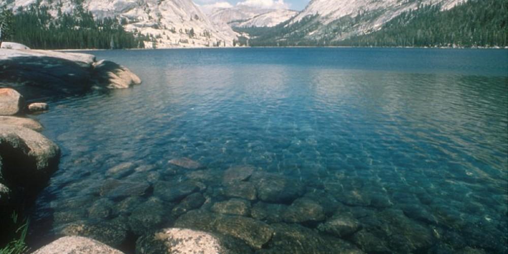Blue Tenaya Lake – M. Floyd