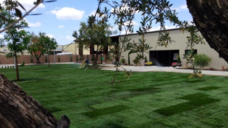 Inviting yard for wine tasting. – San Joaquin Wine Company