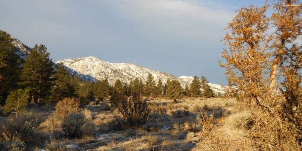 Valley View Loop – Carson Valley Trails Association