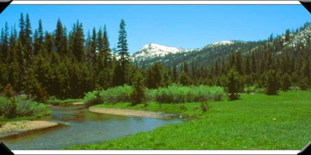 Pacific Valley – Ebbetts Pass National Scenic Byway