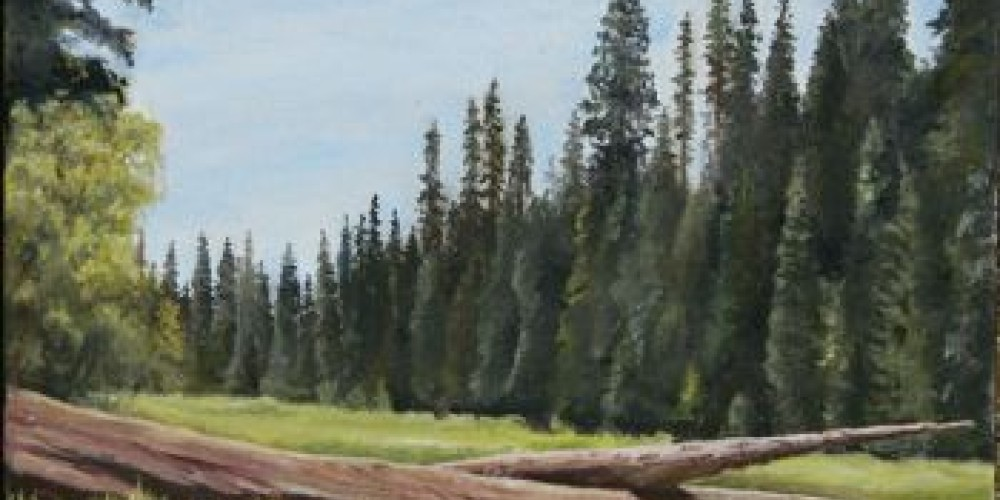 Crescent Meadow oil painting