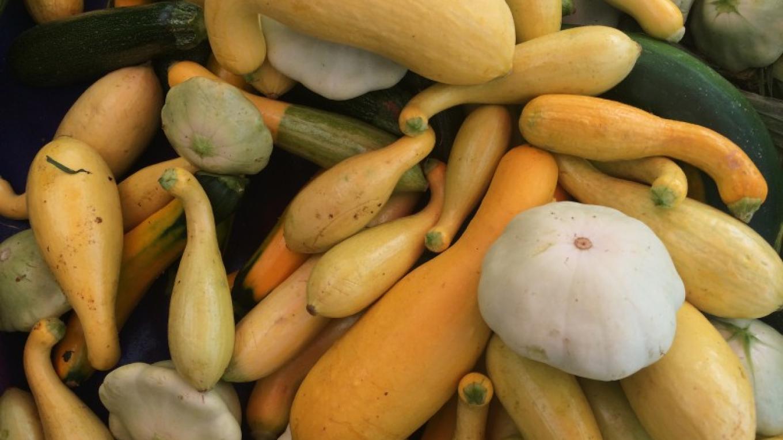 Slow Food Lake Tahoe