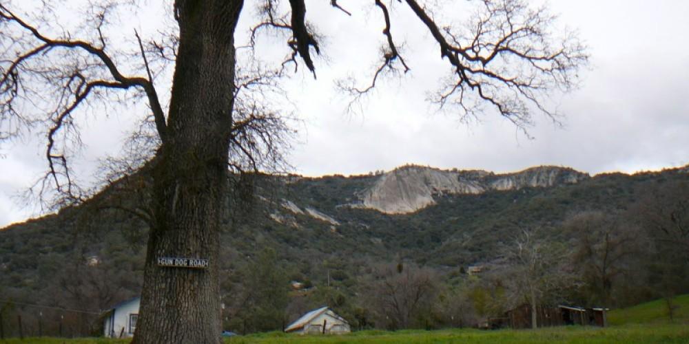 Cap Rock, winter – Susan Leeper