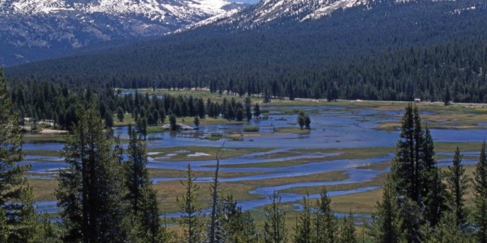 View of Tuolumne Meadows and Sierra Nevada peaks to the east from top of Pothole Dome. – Ray Anderson