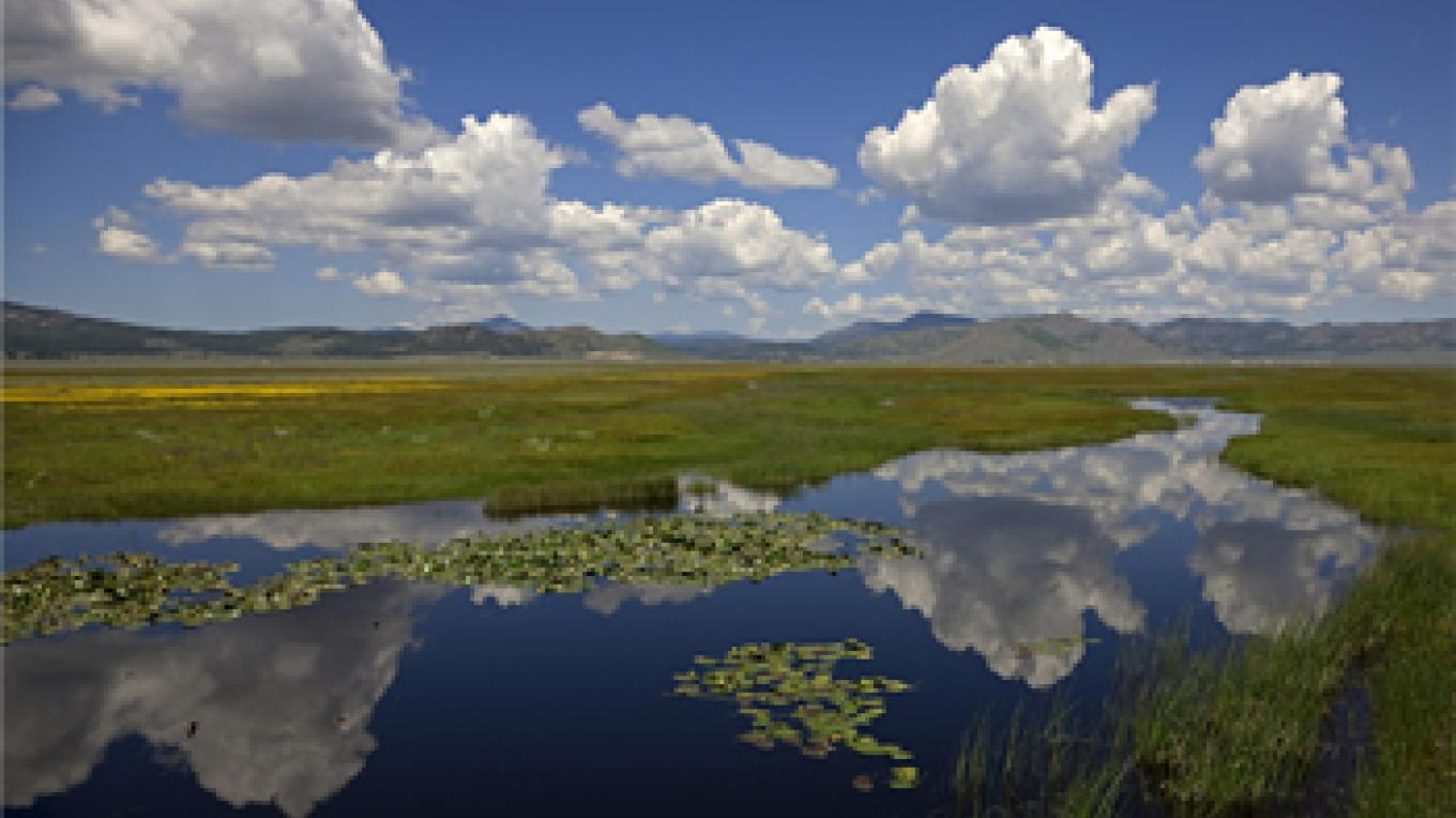 Clouds reflecting in Sierra Valley a waterway – Darby Hayes
