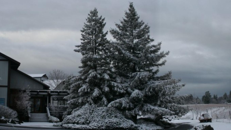 Lava Cap in Winter