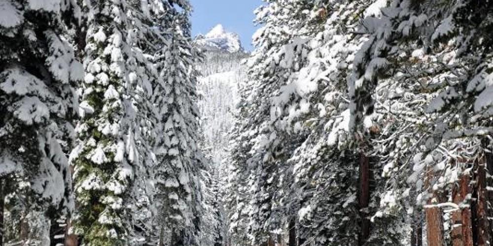 Blackwood Canyon – www.livingyourmountaindream.com