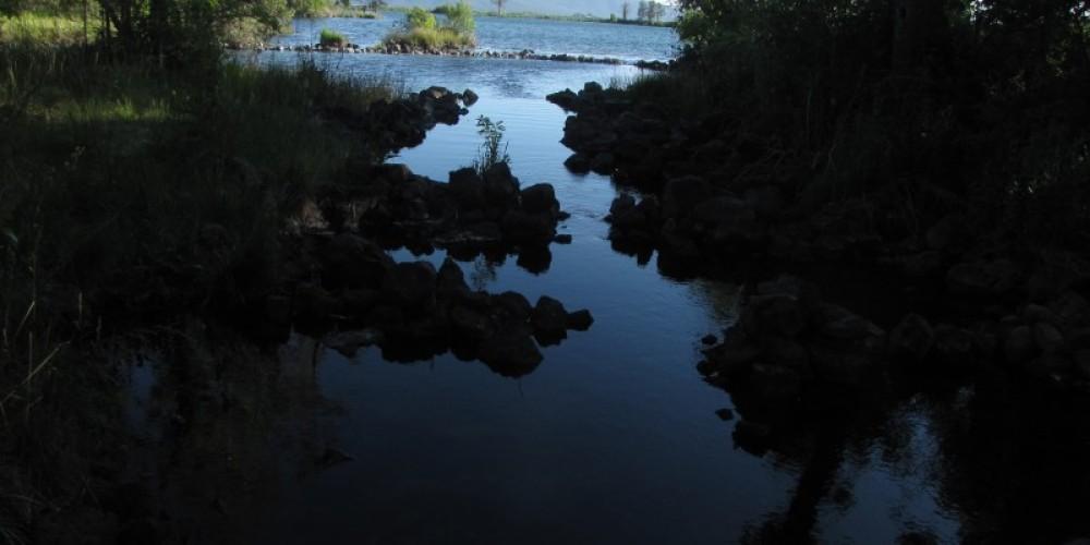 Ancient fish traps at Ahjumawi. – Ben Miles