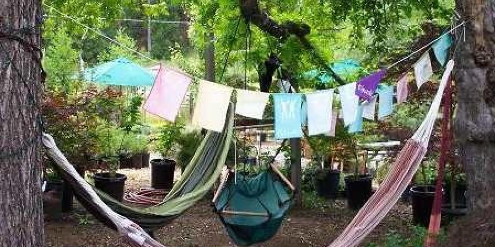Mountain Sage Hammock Garden – Lynn Upthagrove