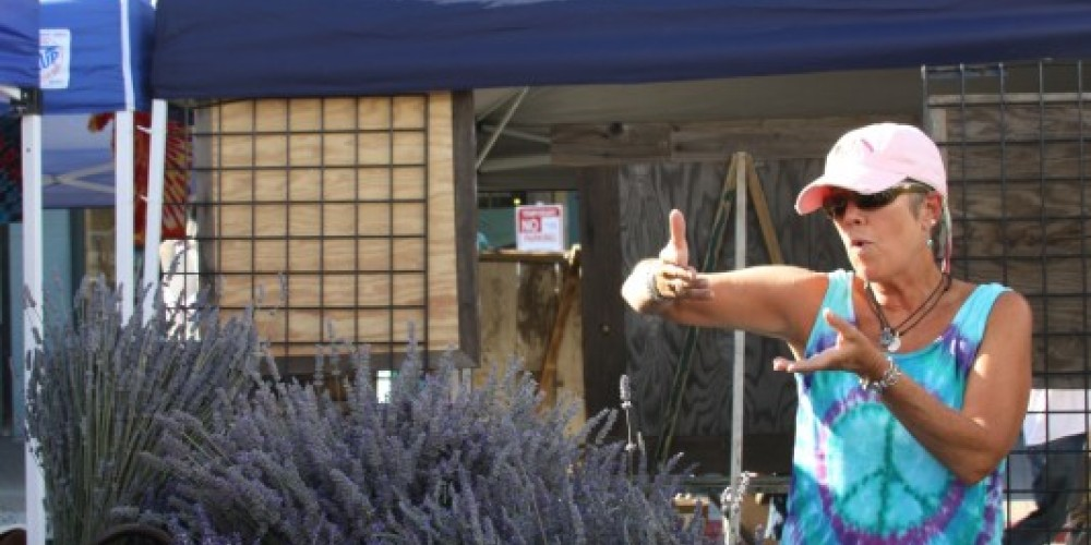 Lavendar Vendor at Truckee Thursdays – Talia Henderson