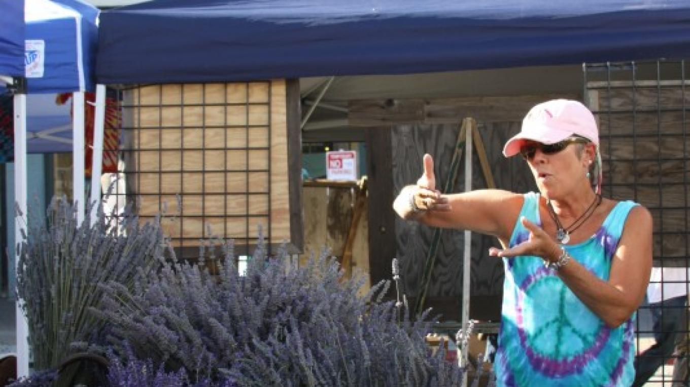 Lavendar Vendor at Truckee Thursdays – Talia Henderson