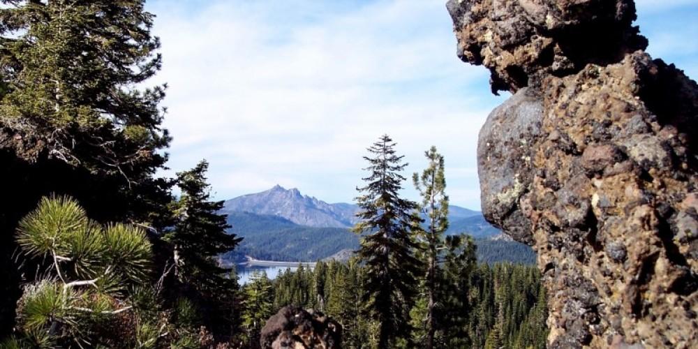 A distant Sierra view through the trees – NevadaRambler.info