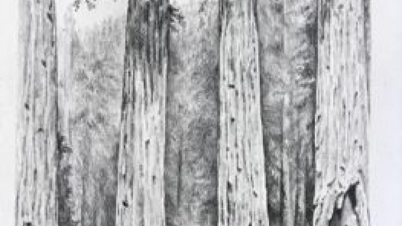 Four Guardsmen pencil drawing