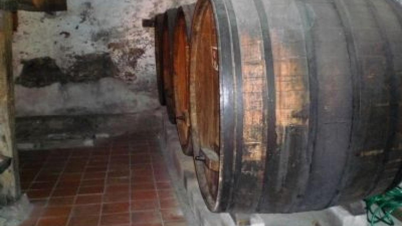 Wine barrels stored in cellar – hmdb.org
