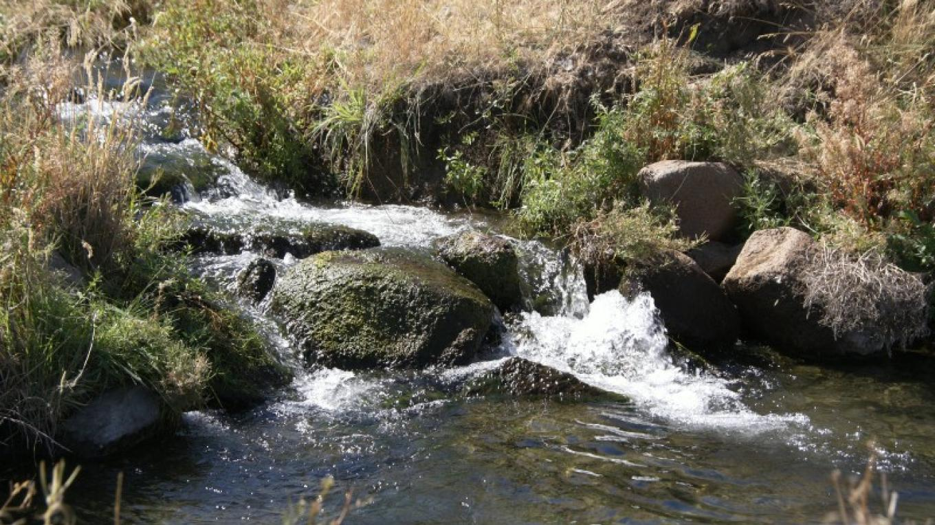 Warm springs flowing in to the pond – Lorissa Soriano