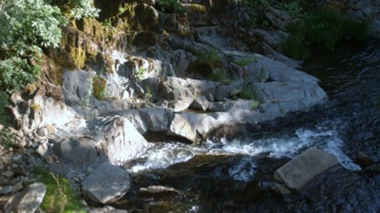 Woods Creek by the old Highway 49 bridge. – Lisa Rogers