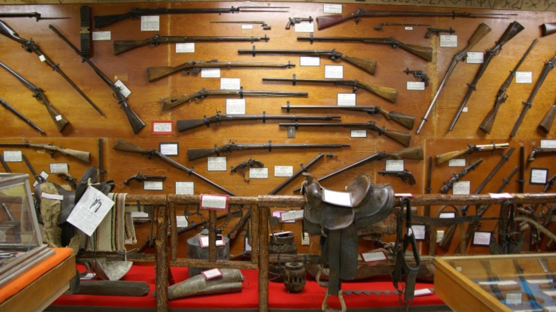 gun collection – Lorissa Soriano