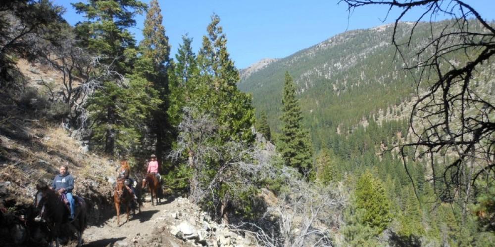 Genoa Loop – Carson Valley Trails Association