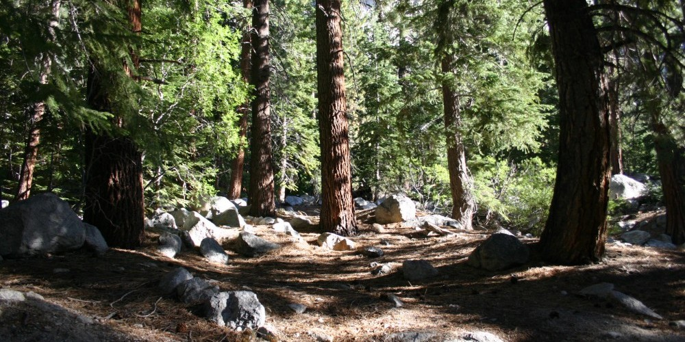 Whitney Trail and other trails are great for hiking, either day or extended. Hiking permits are needed. Check at the Ranger Station at the Visitors Center in town. – Langley