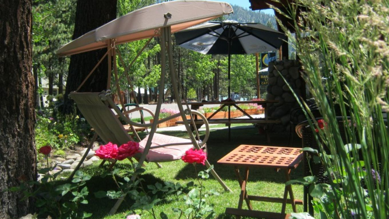 summer garden for outdoor dining – Crystal Ricotta