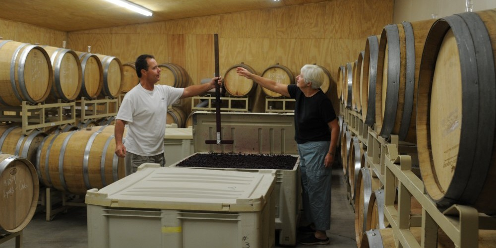 In the barrel room after harvest, during fermentation, Kris shows a customer the process – Harold Casto
