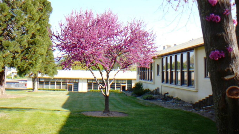 Auberry Elementary School – Susan Leeper
