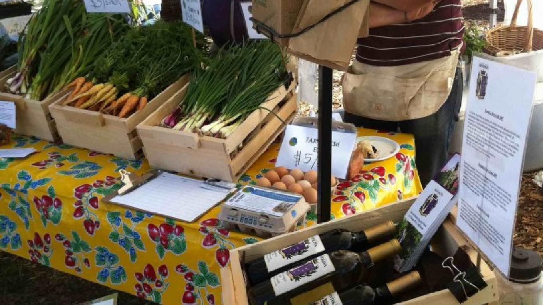 Growers Market vendors – Rose Sponder
