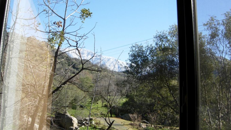 View from studio window – Nikki Crain