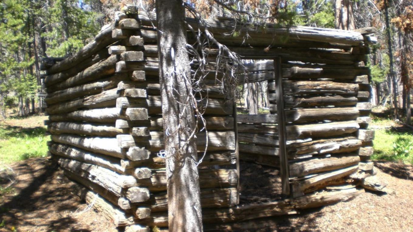 Remnants of an old miner's cabin. – Kerry Davis