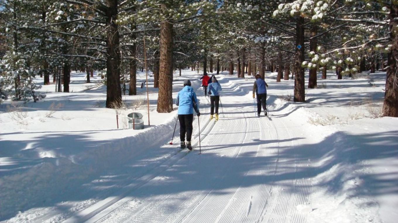 Maggie, Barbara, Phyllis and Jim out for a nice Classic ski! – Brian Knox