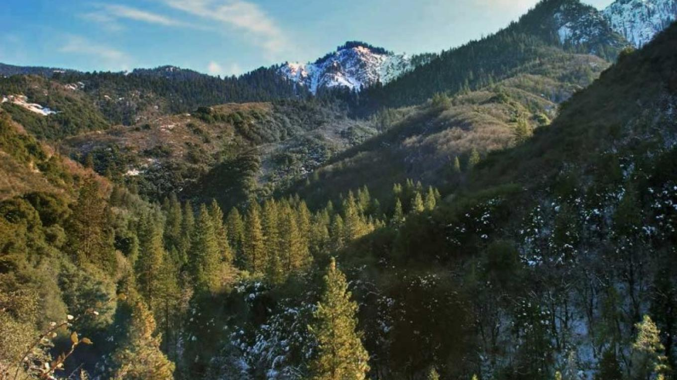 View of the backside of Homer's Nose from Ladybug Trail. – NPS