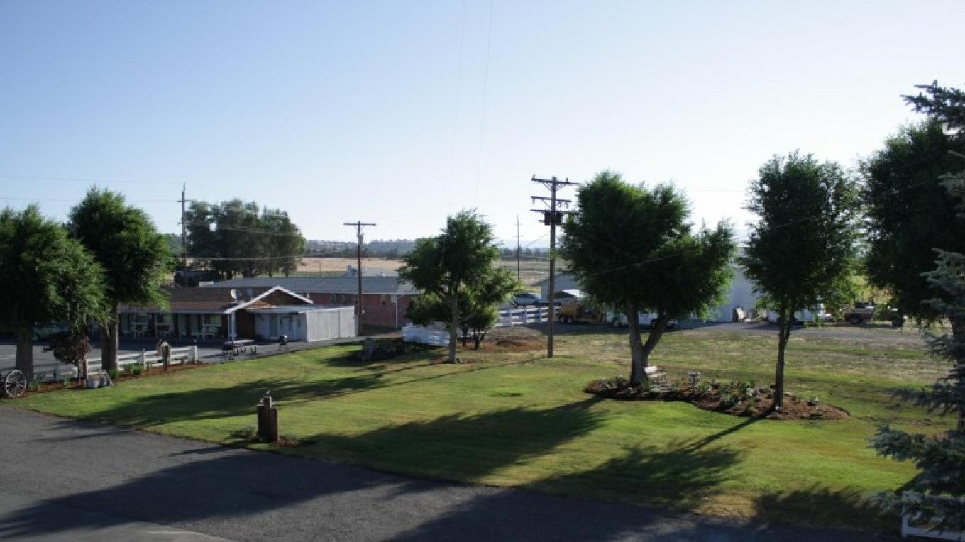 Overlooking main lawn and garden – Eddy Price