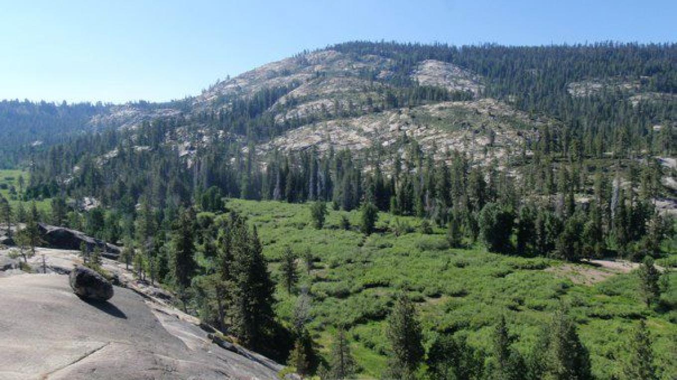 Bell meadow is located in a glacially carved valley surrounded by large granite domes