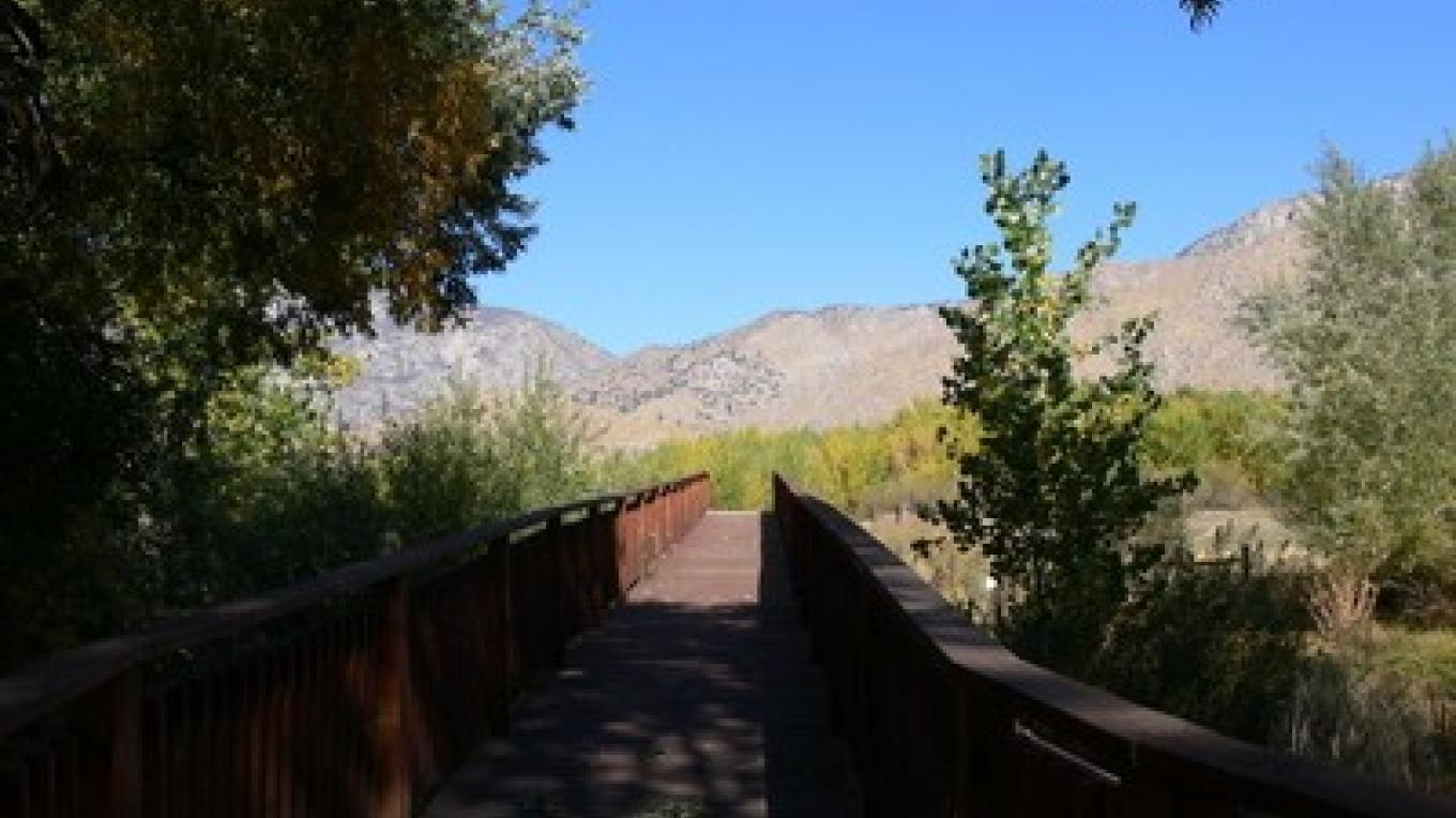 A bridge over Canebrake Creek leads toward the base of the Chimney Peak area. – Alison Sheehey