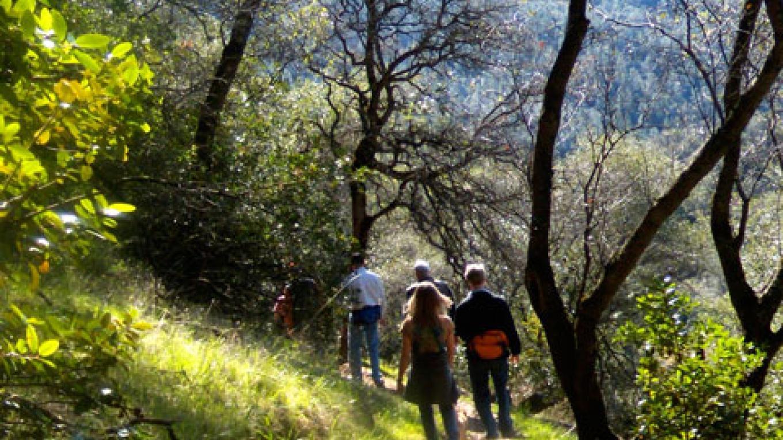 Hiking on the Cardiac Trail – Anita Yoder