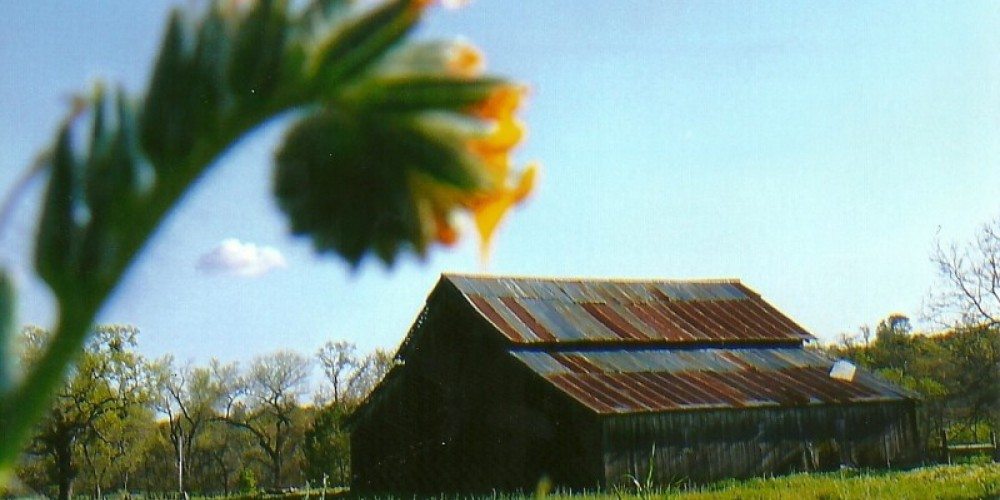 Barn Powerhouse road between Old Town Auberry and New Town New Auberry – Susan Leeper
