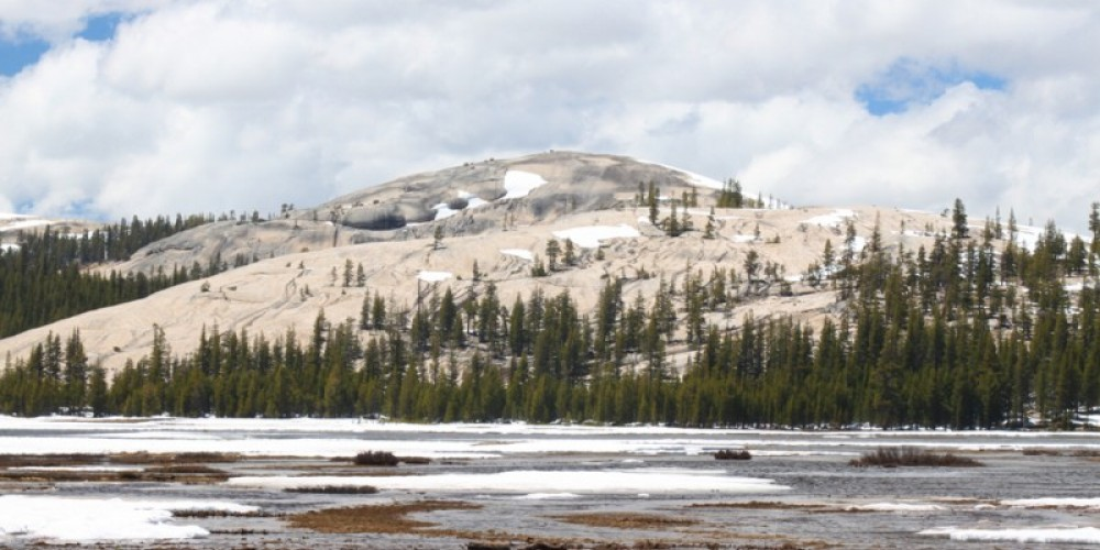 View of Pothole Dome from Tuolumne Meadows – Ray Anderson
