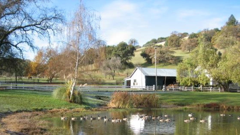 Penobscot Ranch Barn and Pond – Linnea Marenco