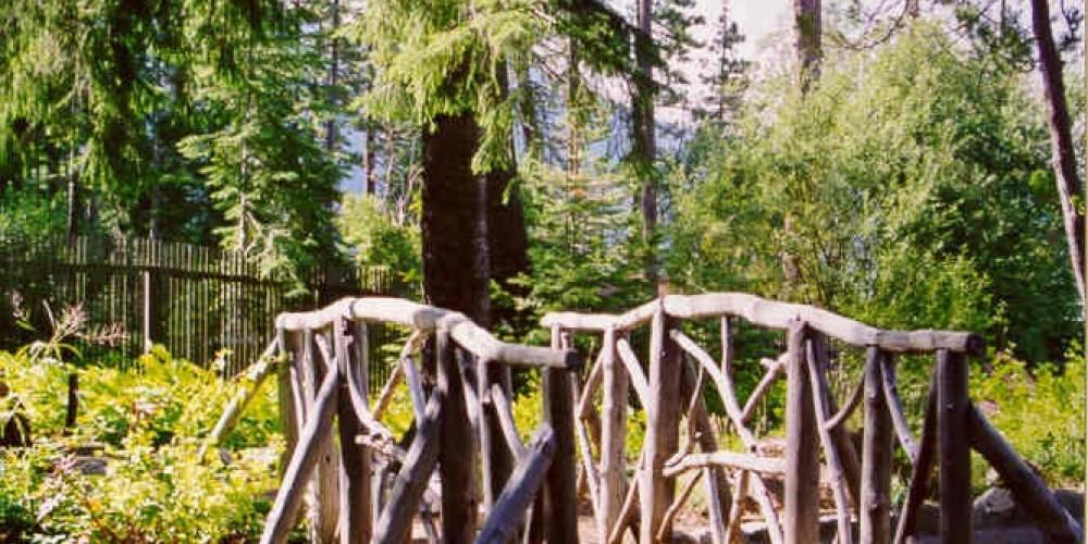 Tallac Site trail – El Dorado Photo Library