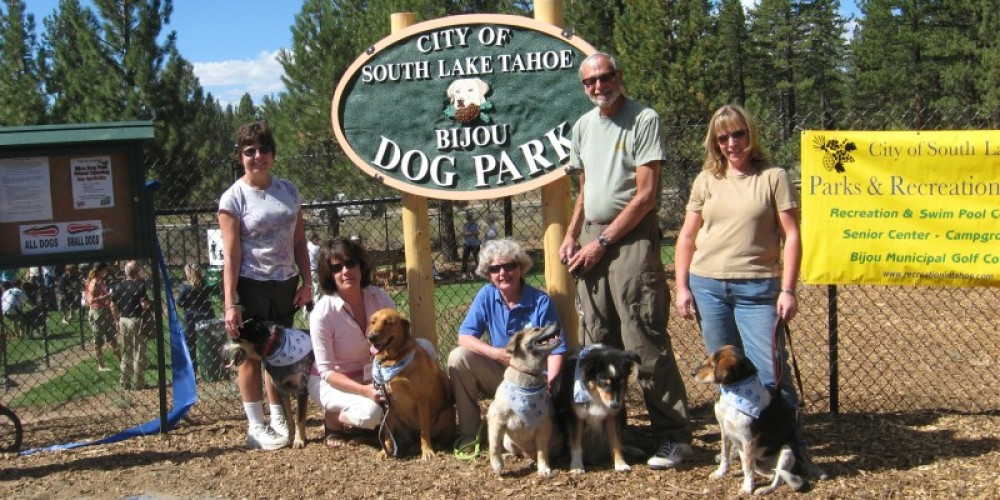 Information on Dog Activities and Facilities – Dawn Armstrong