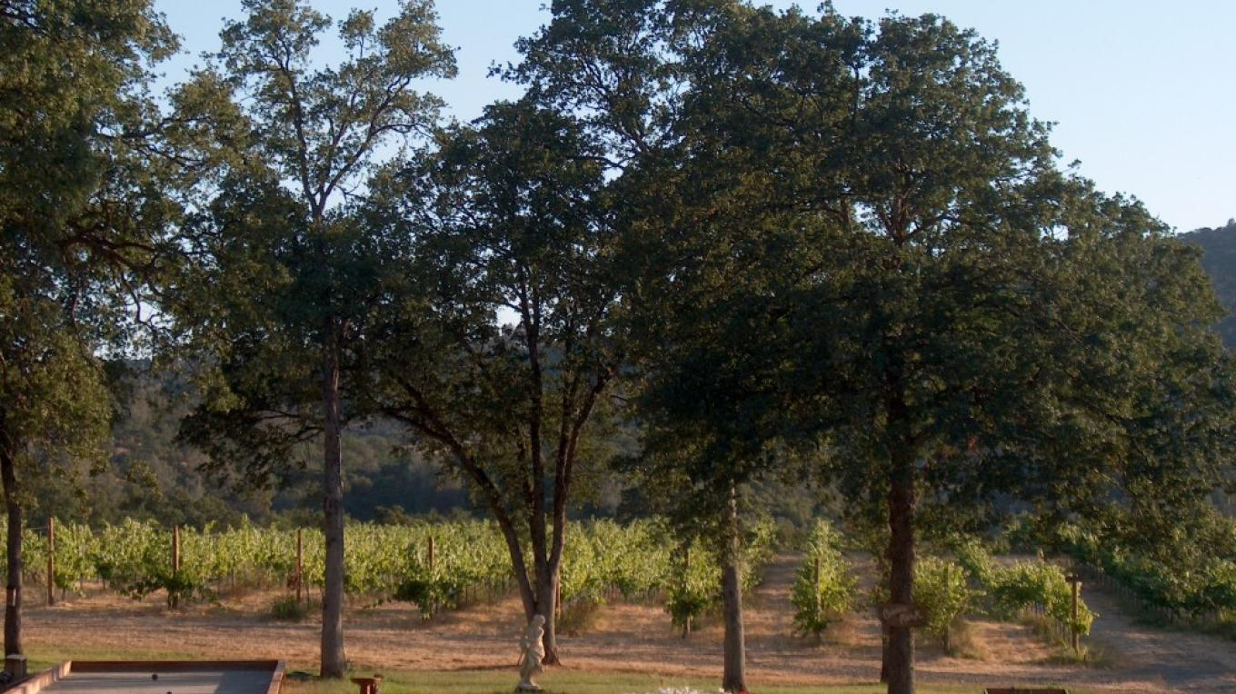 Bring a picnic basket and relax in our vineyard. – Harold Casto