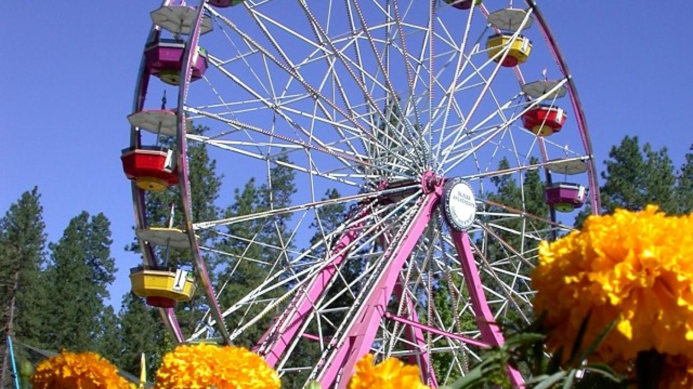 The view of the Nevada County Fair from Gold Path – Nevada County Fairgrounds