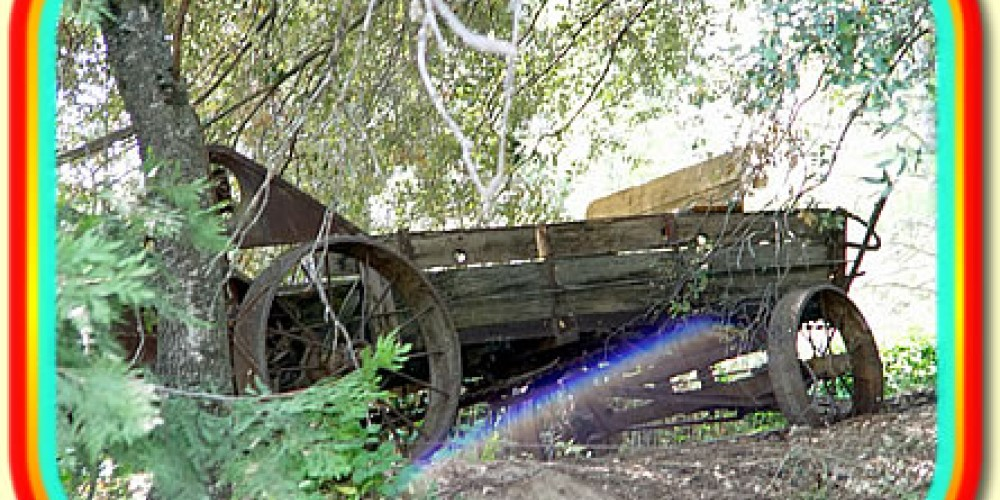 La Cabana pioneer artifacts around the property – La Cabana